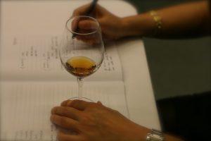 Terronio Wine Course